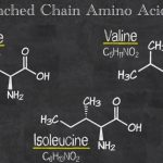 Maximize Recovery with Amino Acids