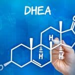 DHEA: The Fountain of Youth?